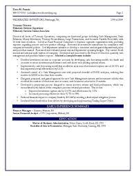 Cfo Sample Resume Vp Of Finance Certified