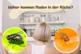 woher kommen maden in der küche