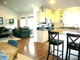 Kitchen Living Room Combo Dining Combination Open Floor Plan