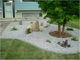 Backyards: Terrific Backyard Rocks. Rocks And Minerals In My ... My Backyard Garden Nation Of Islam Ministry Agriculture Super Groovy Delicious Bite Big Lizard In My Back Yard Erosion Under Soil Backyard Ask An Expert I Think Found Magic Mushrooms Wot Do This Video Is Hella Clickbait Youtube Dinosaur Storyboard By 100142802 Holes In The Best Home Design Ideas Cottage Months Ive Been Creating More Garden Rooms Cat Frances Aggarwal Backyards Terrific Rocks And Minerals Tree Growing Started Fruiting Can Someone Id