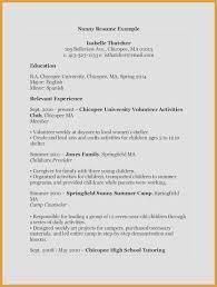 Caregiver Job Description For Resume Unique Sample It Descriptions Of Template Samples Nanny