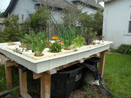 Aquaponics News Backyard Aquaponic Gardening System Benefits Of Backyard Greenhouse Aquaponics And Yard Design For Village Systems Aquaponics Twotiered Back Gardening Fish Farming System Food Growing Freestylefarm Pond Outdoor Fniture Design Ideas Diy Pond Images On Wonderful Endless Reviews Testimonial Collage Pics Commercial Farm Most Likely The Effective Sharingame How To