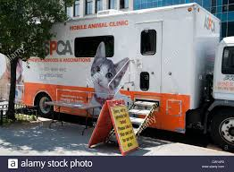 Mobile Animal Clinic Harlem New York Manhattan United States Stock ... 10 Best Places To Adopt A Dog Or Cat In Nyc Aspca Stock Photos Images Alamy Events Pinups For Pitbulls Animal Care Centers On Twitter Meet Adorable Dogs Cats The Worlds Of Aspca And Puppy Flickr Hive Mind Vintage Adorable Animals From Aspcas Historical Archive This Gowanus Aspca Building Sheltered The Brooklyn Bring Texas Animal Shelter Other Happy Tails A Second Chance Chandler Pictures Jestpiccom