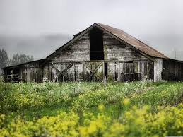 Old Barn ❤ 4K HD Desktop Wallpaper For 4K Ultra HD TV • Dual ... A Pretty Old Barn The Bookshelf Of Emily J Kristen Hess Art Rustic Shed Free Stock Photo Public Domain Pictures Usa California Bodie Barn On Plains Royalty Images Wood Vintage Building Old Home Country Wallpapers Pack 91 44 Barns And Folks Maxis Comments Vlad Konov August Grove Ryegate Rainy Day 3 Piece Pating Print Overgrown Warwickshire England Picture Renovation Inhabitat Green Design Innovation Farm Buildings Click Here For A Larger View
