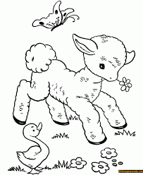 Baby Animals In Spring Coloring Page