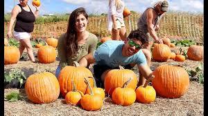 Pumpkin Patch Orlando Fl by Pumpkin Patch At Bedner U0027s Farm Youtube