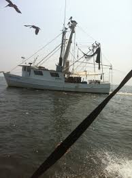 Eds Seafood Shed Mobile by Shrimp Boat Catching Some Delicious Gulf Shrimp Dauphin Island