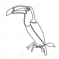 Toucan Clipart Black And White Free Download Best Toucan Clipart