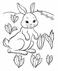 Free Rabbit Color Pages To Print Animal Coloring Cute