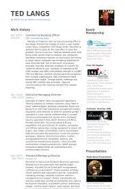 Business Plan Professional Development