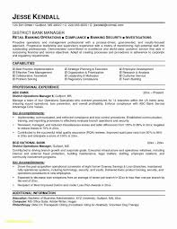 Personal Banker Resume Inspirational Lovely Bank Customer Service Vh06 Documentaries For Change Of