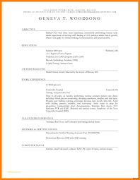 100 Free Professional Resume Templates Objective Entry Level New Template