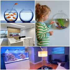 integrate a small aquarium as a soothing element in the
