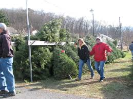 Christmas Tree Shops Lancaster Pa by Mcclure Christmas Tree Farm Bids Farewell After A Half Century
