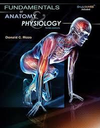 Anatomy Coloring Book Kaplan Human Pdf Free Download Body