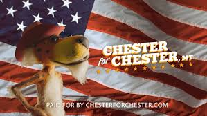 Chester Cheetah Sinks His Teeth Into Politics, Campaigns For Mayor ... Cheetah Trucking Best Image Truck Kusaboshicom The Final Aessments For Tax Year 2017 And Said Are To Kristine Ripley Inside Sales Codinator Transportation Reduce Your Logistics Fleet Operating Costs By 10 30 Van Eerden Outdoors 23 Photos Productservice Tsi 5gallon Tire Air Bead Seater Steel Tank Model Ch5 Cheetah1express Cheetah1express Cheetah Competitors Revenue Employees Owler Company Profile Systems Home Facebook Gooseneck Trailer Real Manufacturer Chassis Mod American New Container Youtube