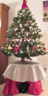 Saran Wrap Christmas Tree With Ornaments by Cats And Christmas Trees