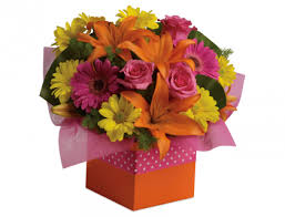 AA Members Save 20 From Teleflora New Zealand