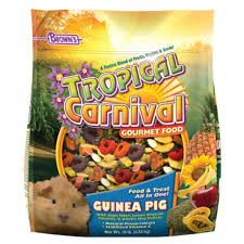 Can Guinea Pigs Eat Salted Pumpkin Seeds by Fm Brown U0027s Brown U0027s Tropical Carnival Gourmet Guinea Pig Food Reviews