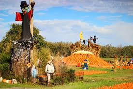 Chesterfield Pumpkin Patch 2015 by Annual Trip To The Pumpkin Patch The Big Séance