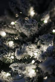 10 Foot Artificial Fraser Fir Christmas Tree by King Flock Christmas Tree King Of Christmas
