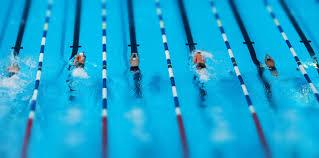 Swimming Pool Lanes Background Contemporary Swim Lanesjpg Throughout