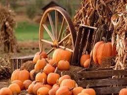 Mission Valley Pumpkin Patch by Charming Pumpkin Patches In Nevada Are Picture Perfect For A Fall Day