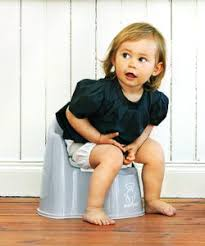 Toddler Potty Chairs Amazon by Potty Chair Guide We Review The Best Potty Training Gear