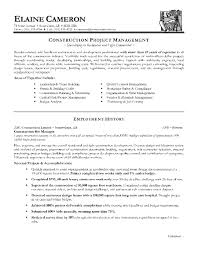 Construction Project Manager Resume Best Of Examples Example A