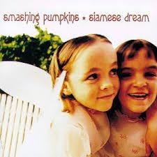 Smashing Pumpkins Bass Player by Rock News Smashing Pumpkins Bass Player On Cover Of U0027siamese
