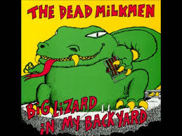 The Dead Milkmen - Serrated Edge - YouTube Roadsendnaturalist Roads End Naturalist Raptormaniacs San Diego Zoo Part I Reptile Mesa Lovely Plantings My Adventures In Gardening Big White Throat Monitor Lizard Reptilians Do It Best 1985 Best Amazing Lizards Images On Pinterest Chameleons Lorde Archives The Key Digital Wallpaper Beautiful Ldon V House Pet Updates Chris And Ash Discussions Of Exotic Species Music Concerts Life Dead Milkmen Laurel Hill July 2010