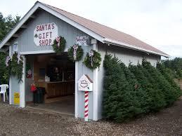 Christmas Tree Shop Brick Nj by Santas Christmas Tree Farm Christmas Lights Decoration