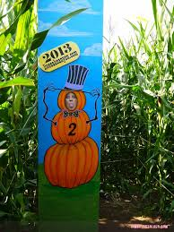 Norms Pumpkin Patch 2015 by Live Oak Canyon Pumpkin Patch Iamnotastalker