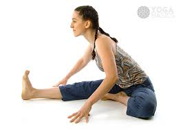 Seated Head To Knee Pose O Yoga Basics