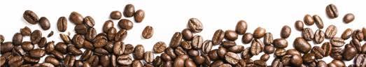 Coffee Creamer Pairings