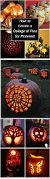 Owl Pumpkin Carving Templates Easy by 109 Best Pumpkin Carving Templates Images On Pinterest Halloween
