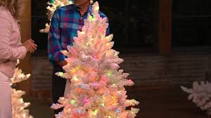 Pink Flocking Spray For Christmas Trees by Bethlehem Lights 9 U0027 Flocked Bedford Spruce Christmas Tree With Dan