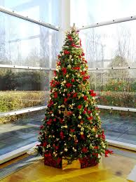 8ft Christmas Trees Artificial Ireland by Corporate Christmas Trees Florist Limerick Flowers Limerick