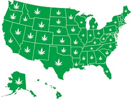 states pot is obama we re calling for the legalization of recreational in