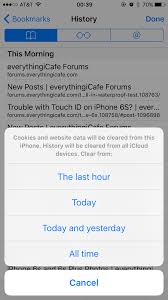 Safari in iOS 9 Clears Cookies And Website Data When Clearing