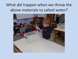Materials Sink Or Float by Sink Or Float To Water