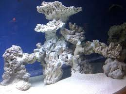 Saltwater Aquascaping Ideas How To Work With Live Rock In A Marine ... Aquascape Designs Surripuinet Aquascaping Live Rocks In Your Saltwater Aquarium Columns A Saltwater Tank Callorecom Need Ideas General Rfkeeping Discussion Week 3 Aquascaping 120 Gal Rimless Update Youtube 55g Vertical Tank Ideas Saltwaterfish Forum Aquascape With Rocks Google Search Aquariums Pinterest Bring Back The Wall Rock News Reef Builders Walls For Building Tiger Fish Aquascapinglive Rock Help Tcmas Forums