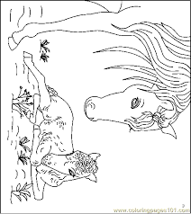 Horse Coloring Page 30