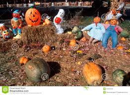 Swan Pumpkin Patch Snohomish by Halloween Characters In Pumpkin Patch Maggie Valley Tennessee