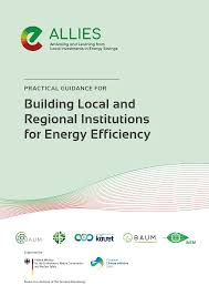 building local and regional institutions for energy efficiency