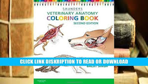 Saunders Animal Anatomy Coloring Book E Books Veterinary By
