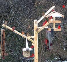 Marvellous Bird Feeder Store Cheap Bird Feed Store Wild Bird Feed