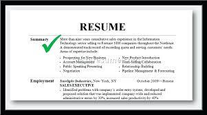 Resume Summary Example Statement