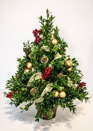 Christmas Tree Shop Syracuse Ny by Oh Little Christmas Tree Cfe 1212 1 Coleman Florist Inc