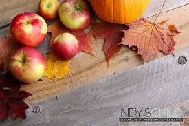Best Pumpkin Patches Indianapolis by 17 Best Images About Fall Fun In Indianapolis On Pinterest Parks
